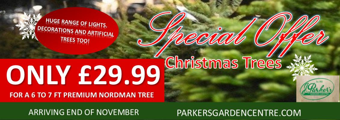 Christmas Tree Basnner