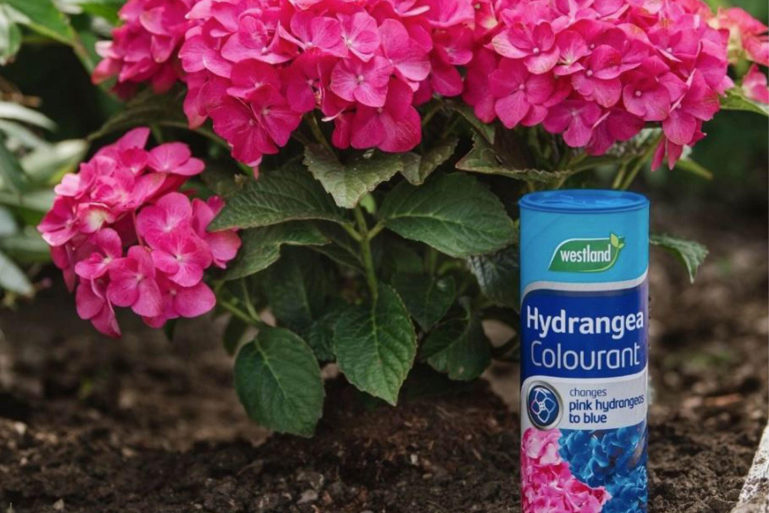 blog hyd colourant