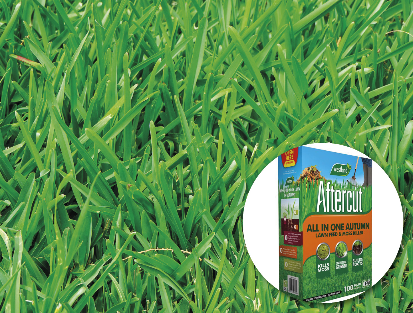 Lawn and autumn lawn producs